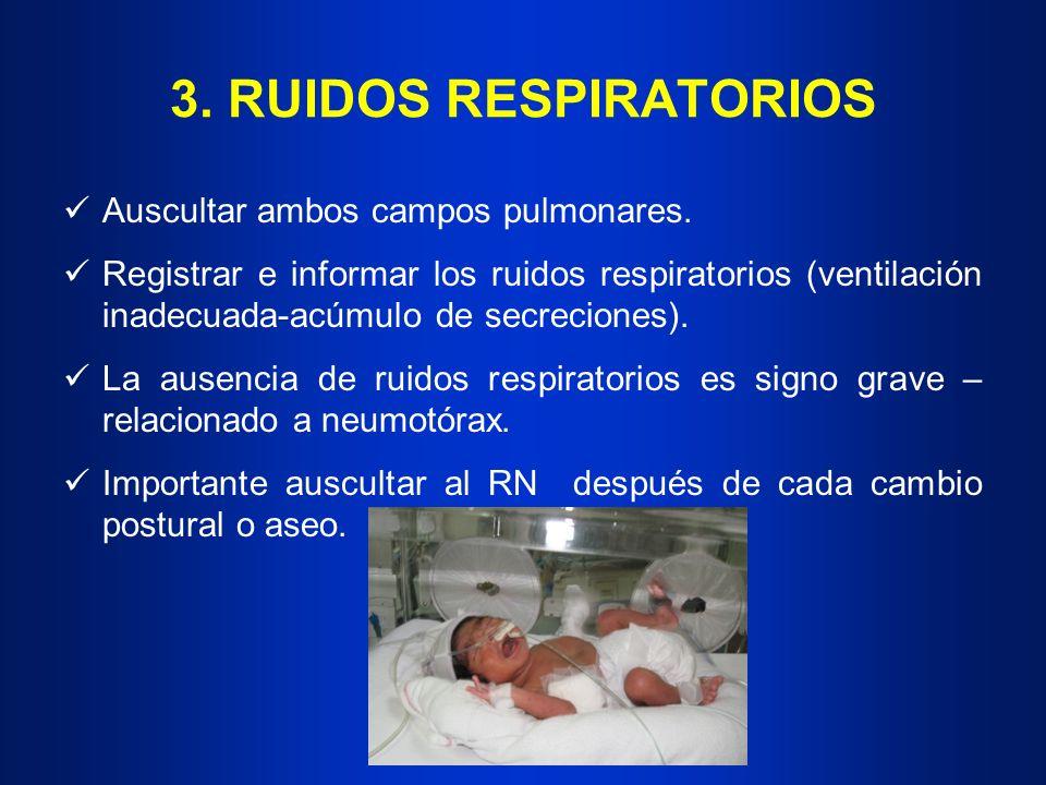 3. RUIDOS RESPIRATORIOS Auscultar ambos campos pulmonares.