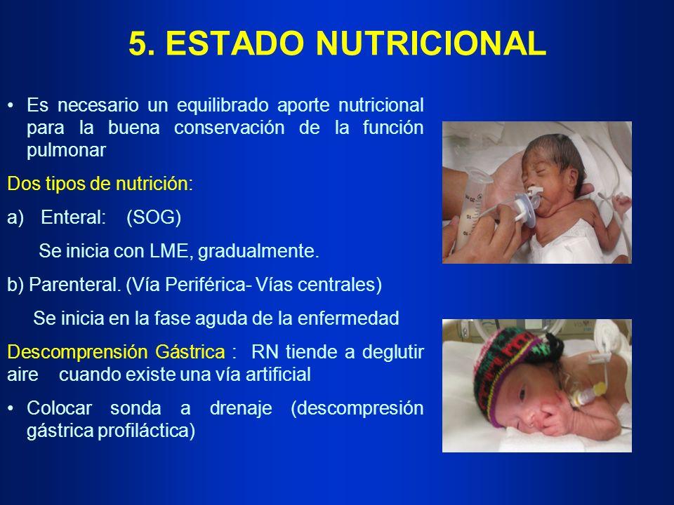 5. ESTADO NUTRICIONAL Es necesario un equilibrado aporte nutricional para la buena conservación de la función pulmonar.