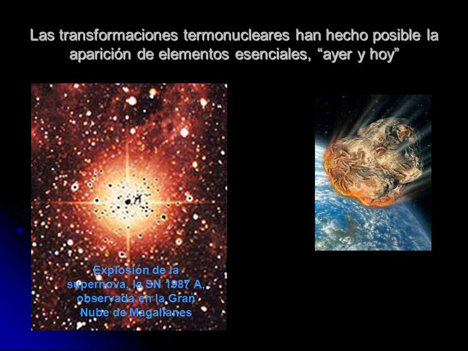 Las transformaciones termonucleares han hecho posible la aparición de elementos esenciales, ayer y hoy