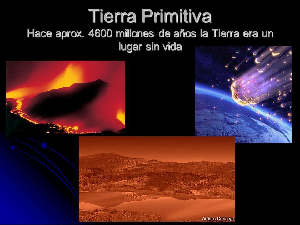 Tierra Primitiva Hace aprox