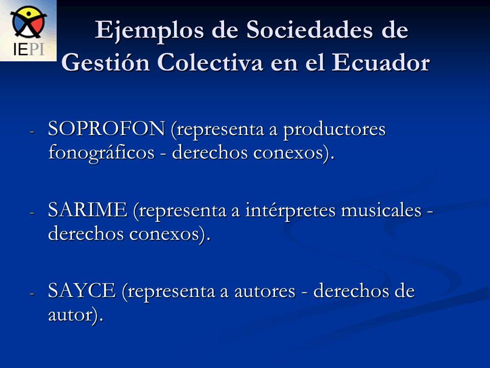 Ejemplos de Sociedades de Gestión Colectiva en el Ecuador