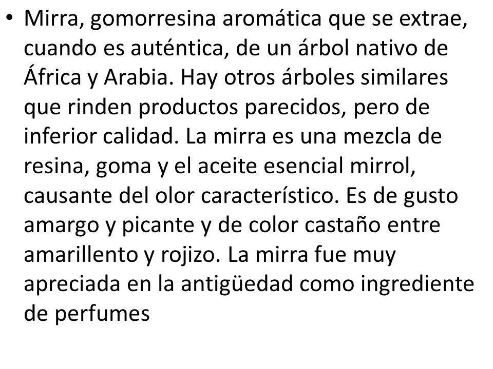 Mirra, gomorresina aromática que se extrae, cuando es auténtica, de un árbol nativo de África y Arabia.