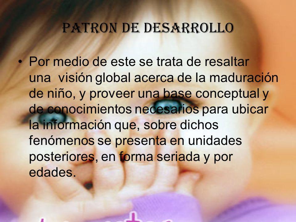 PATRON DE DESARROLLO
