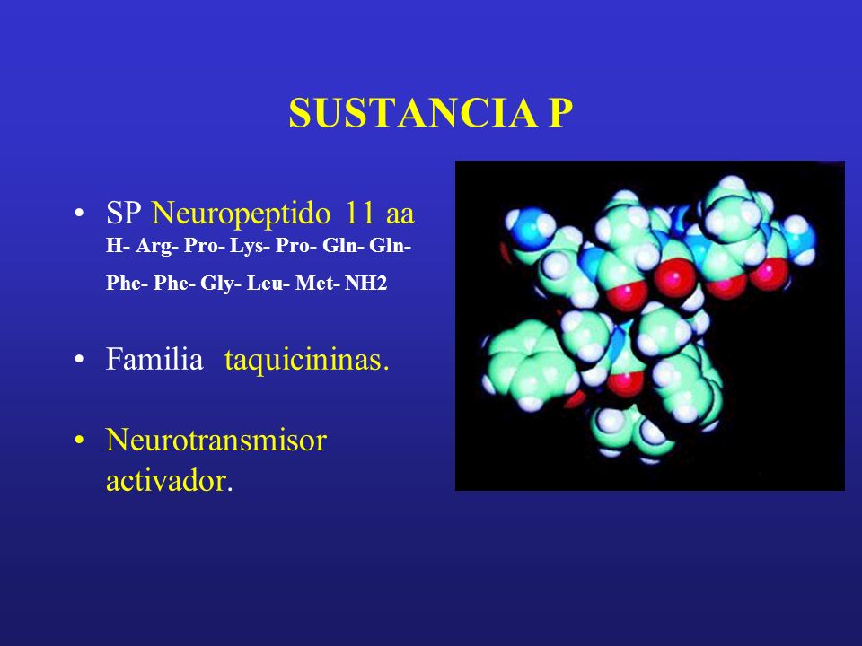 SUSTANCIA P SP Neuropeptido 11 aa Familia taquicininas.