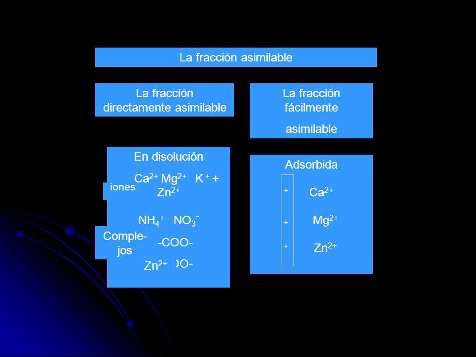 iones La fracción asimilable La fracción directamente asimilable