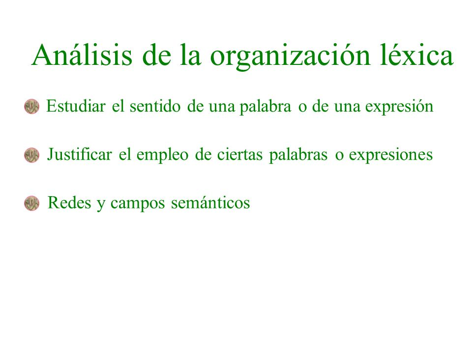Análisis de la organización léxica