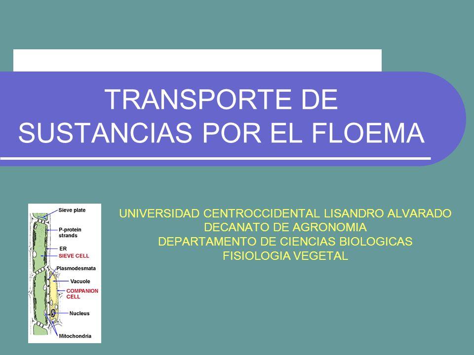 TRANSPORTE DE SUSTANCIAS POR EL FLOEMA