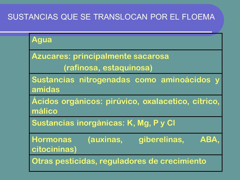 SUSTANCIAS QUE SE TRANSLOCAN POR EL FLOEMA