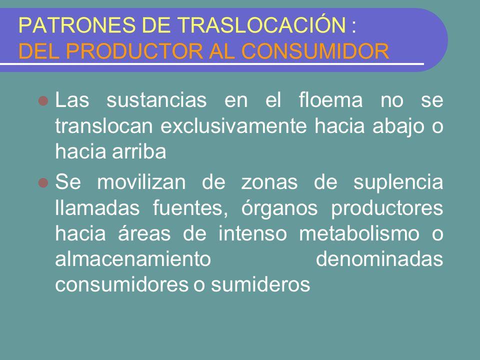 PATRONES DE TRASLOCACIÓN : DEL PRODUCTOR AL CONSUMIDOR