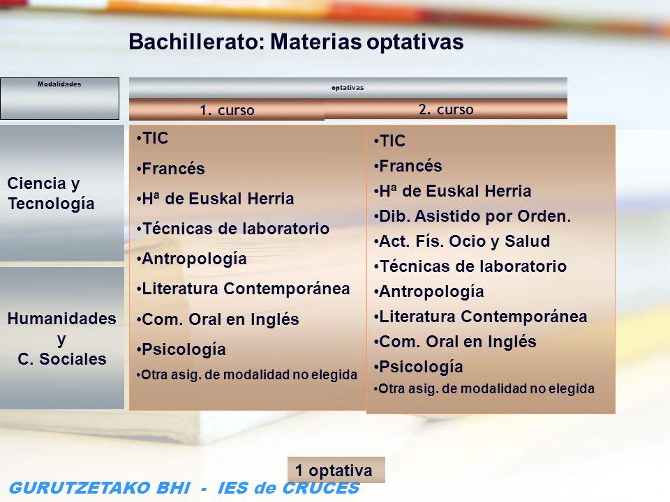 Bachillerato: Materias optativas