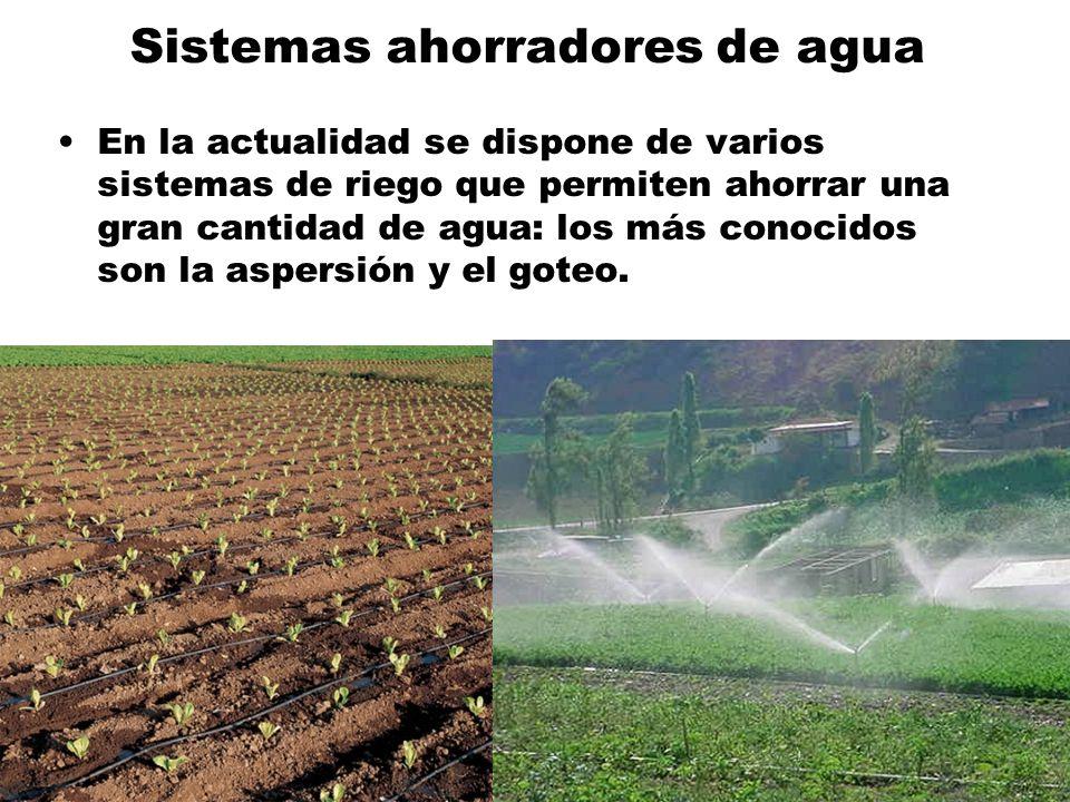 Sistemas ahorradores de agua