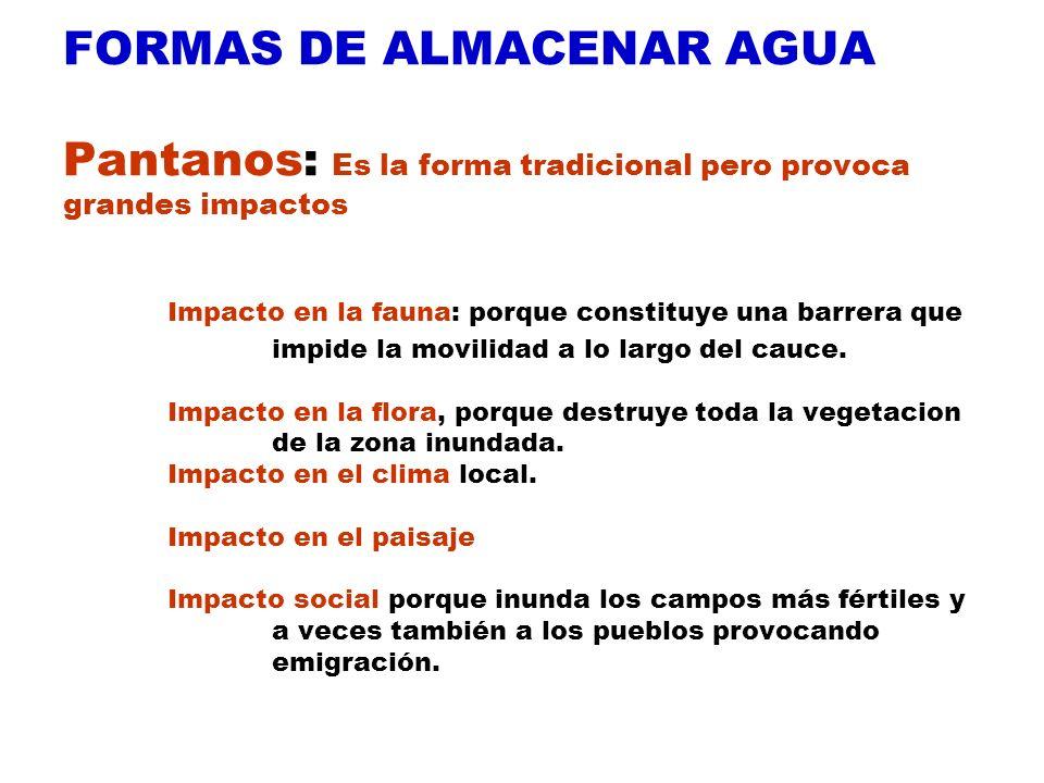 FORMAS DE ALMACENAR AGUA Pantanos: Es la forma tradicional pero provoca grandes impactos Impacto en la fauna: porque constituye una barrera que impide la movilidad a lo largo del cauce.
