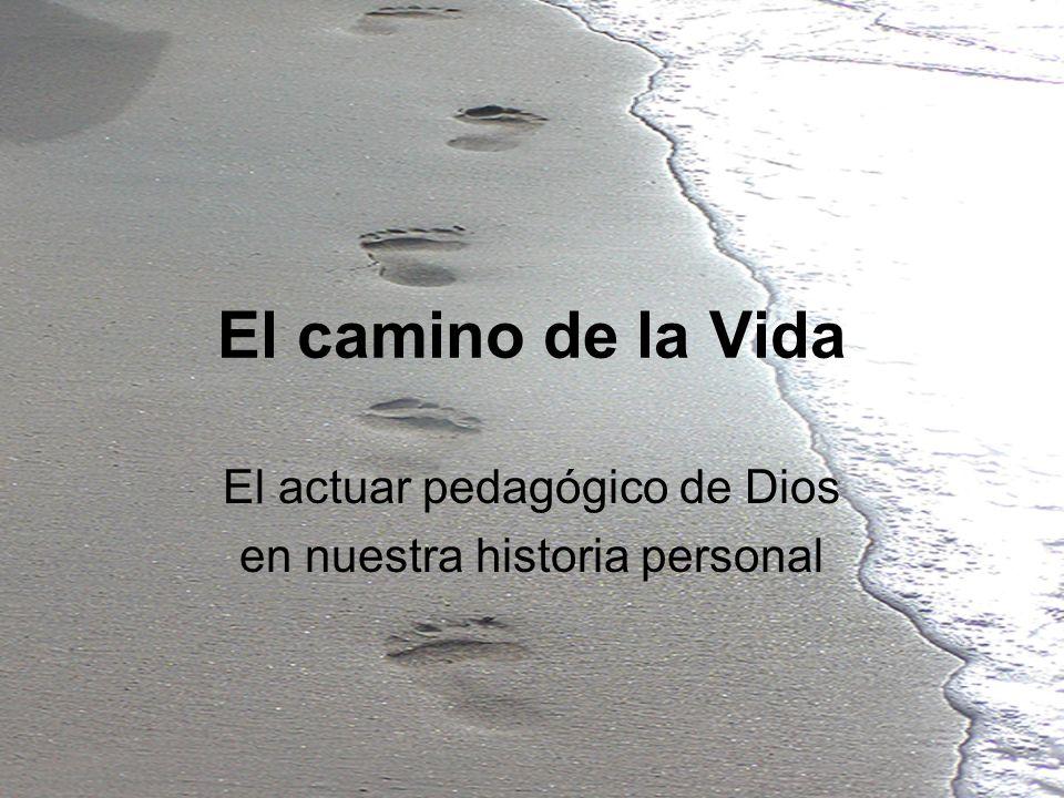 El actuar pedagógico de Dios en nuestra historia personal