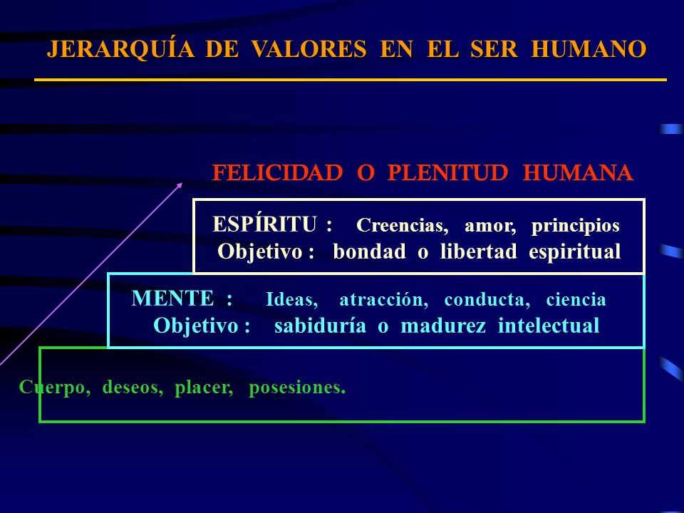JERARQUÍA DE VALORES EN EL SER HUMANO