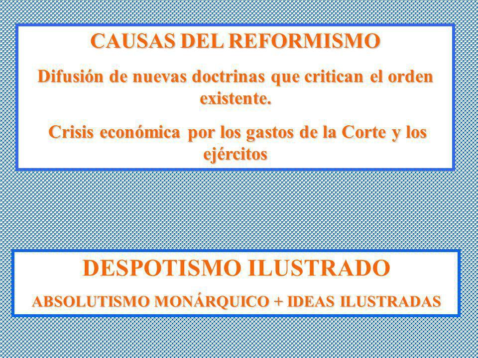 DESPOTISMO ILUSTRADO CAUSAS DEL REFORMISMO
