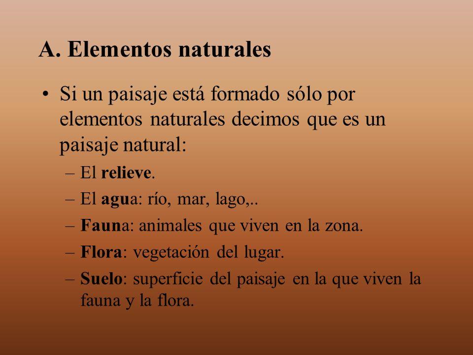 A. Elementos naturalesSi un paisaje está formado sólo por elementos naturales decimos que es un paisaje natural: