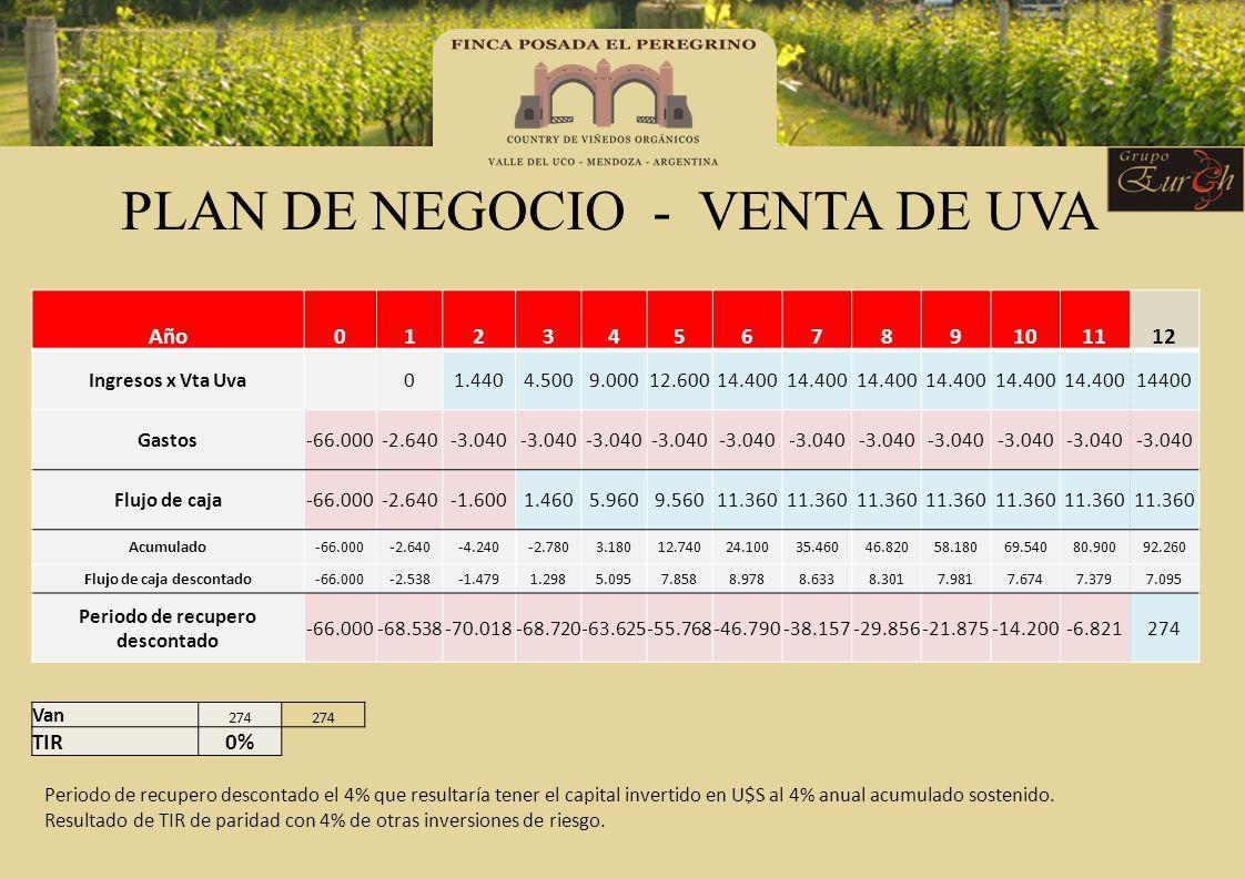 PLAN DE NEGOCIO - VENTA DE UVA