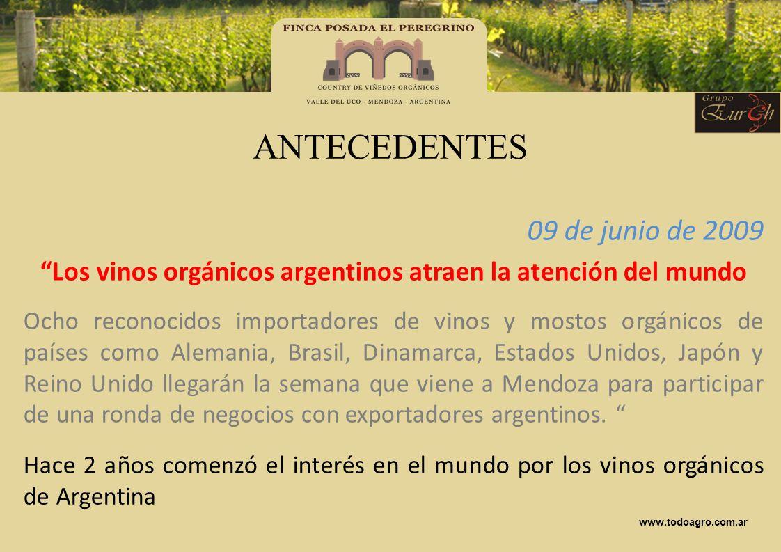 Los vinos orgánicos argentinos atraen la atención del mundo