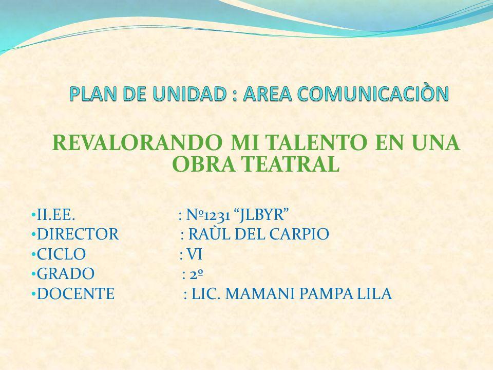 PLAN DE UNIDAD : AREA COMUNICACIÒN