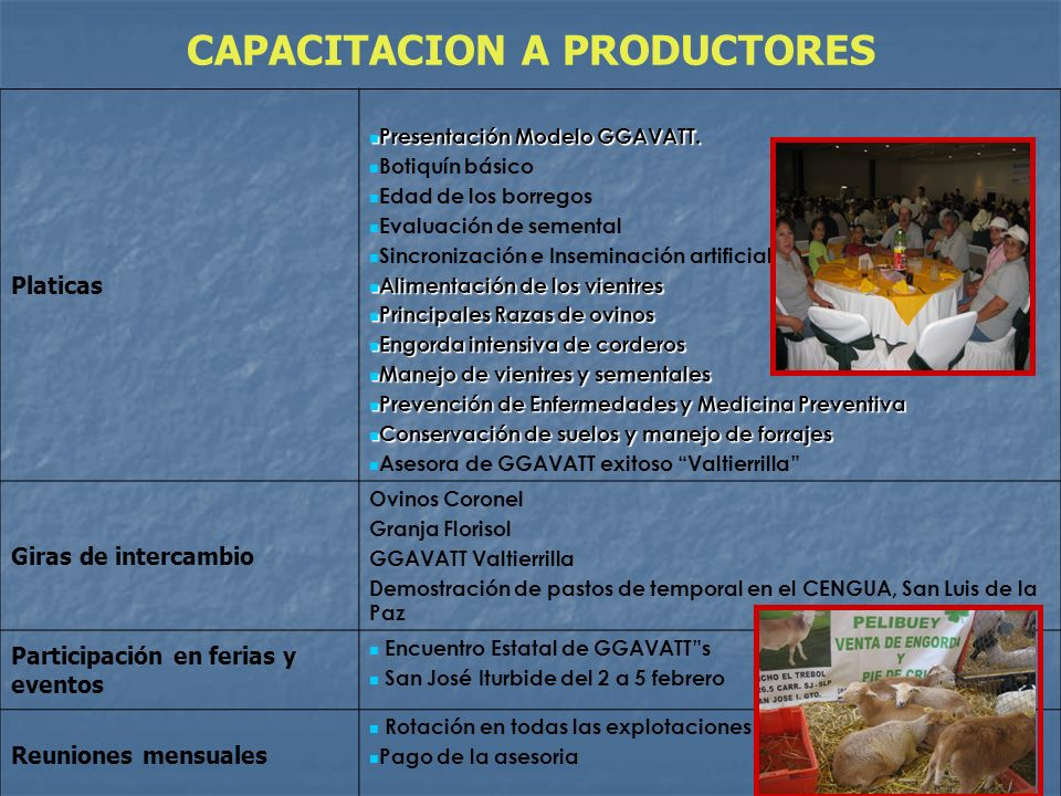 CAPACITACION A PRODUCTORES