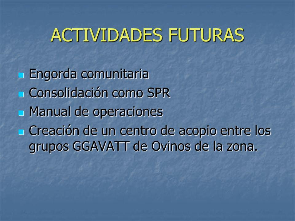 ACTIVIDADES FUTURAS Engorda comunitaria Consolidación como SPR