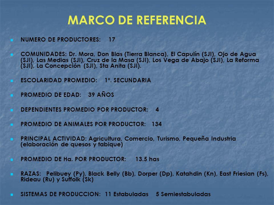 MARCO DE REFERENCIA NUMERO DE PRODUCTORES: 17