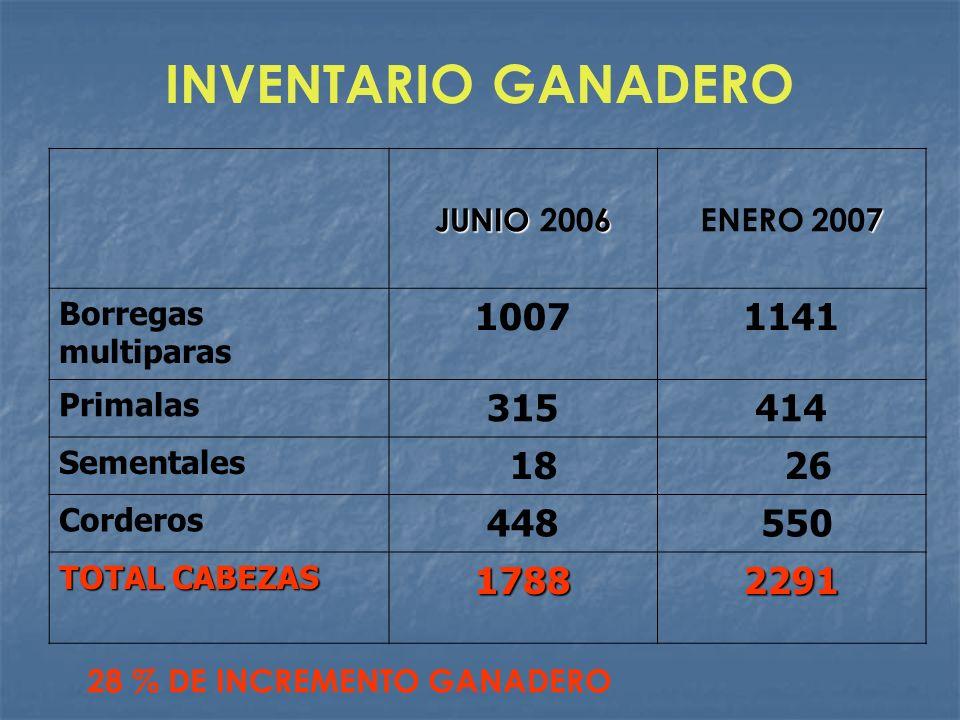 INVENTARIO GANADERO JUNIO 2006. ENERO 2007. Borregas multiparas. 1007. 1141. Primalas. 315. 414.