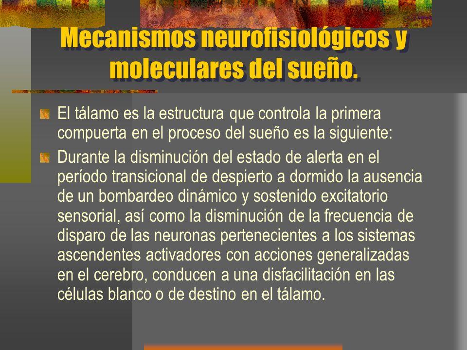 Mecanismos neurofisiológicos y moleculares del sueño.
