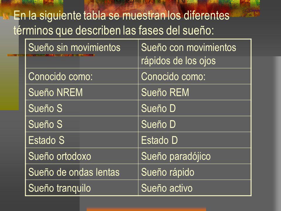 En la siguiente tabla se muestran los diferentes términos que describen las fases del sueño:
