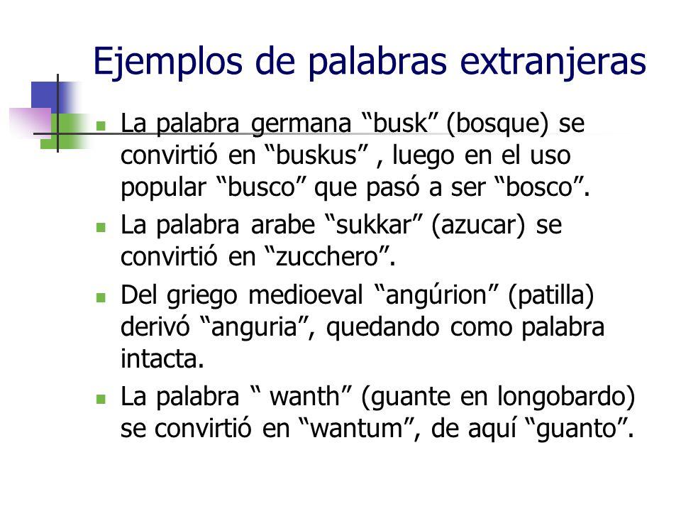 Ejemplos de palabras extranjeras
