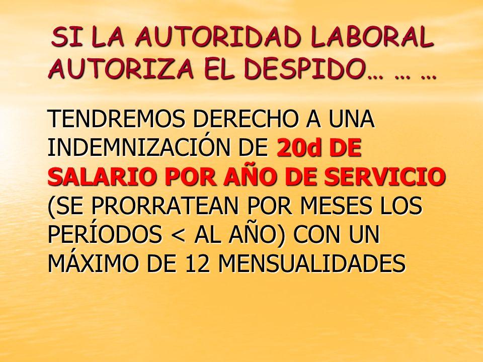 SI LA AUTORIDAD LABORAL AUTORIZA EL DESPIDO… … …