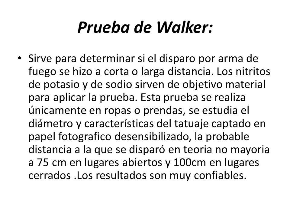 Prueba de Walker: