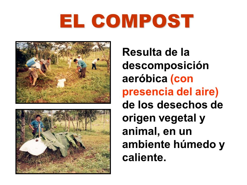 EL COMPOST