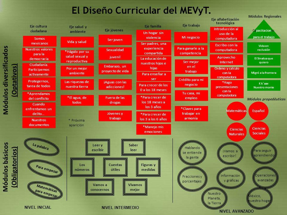 El Diseño Curricular del MEVyT.