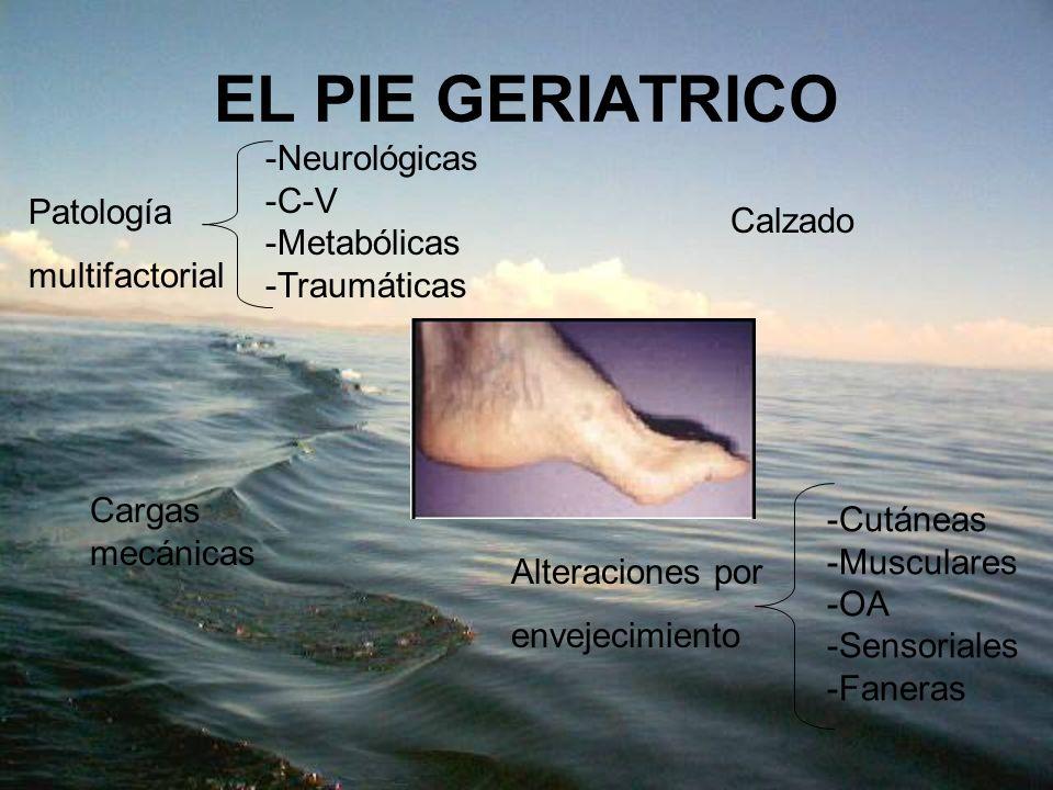 EL PIE GERIATRICO Neurológicas C-V Metabólicas Patología Calzado
