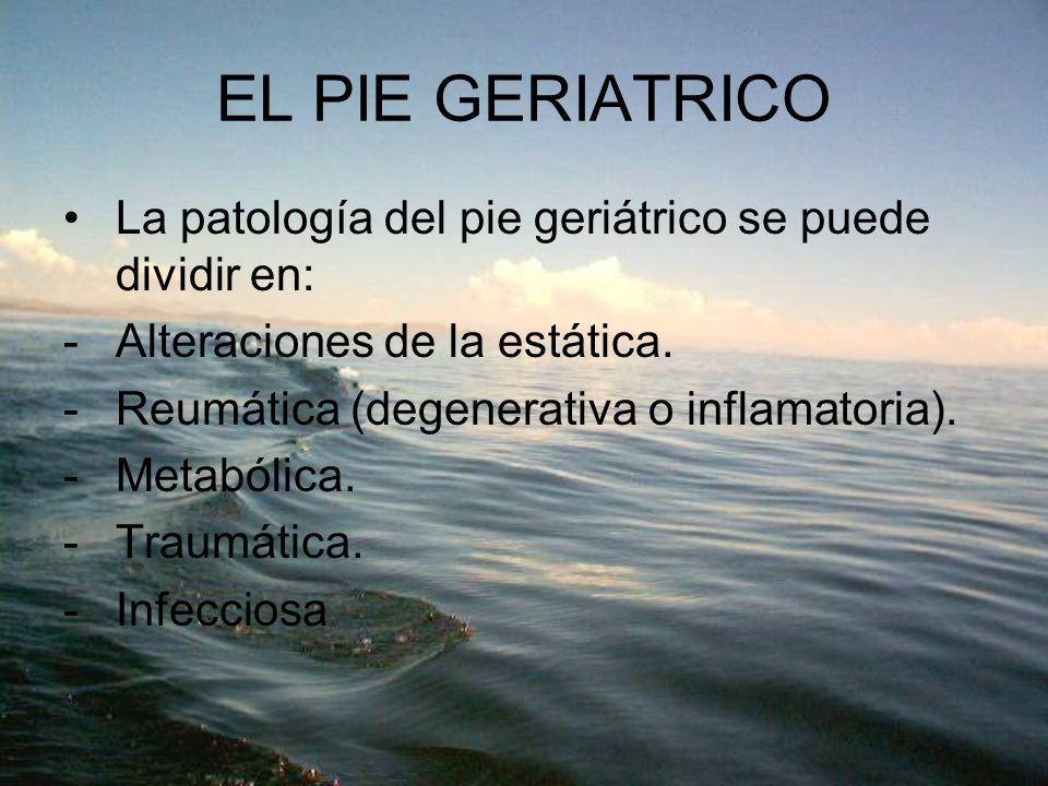 EL PIE GERIATRICO La patología del pie geriátrico se puede dividir en: