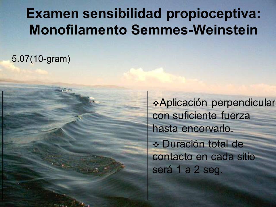 Examen sensibilidad propioceptiva: Monofilamento Semmes-Weinstein