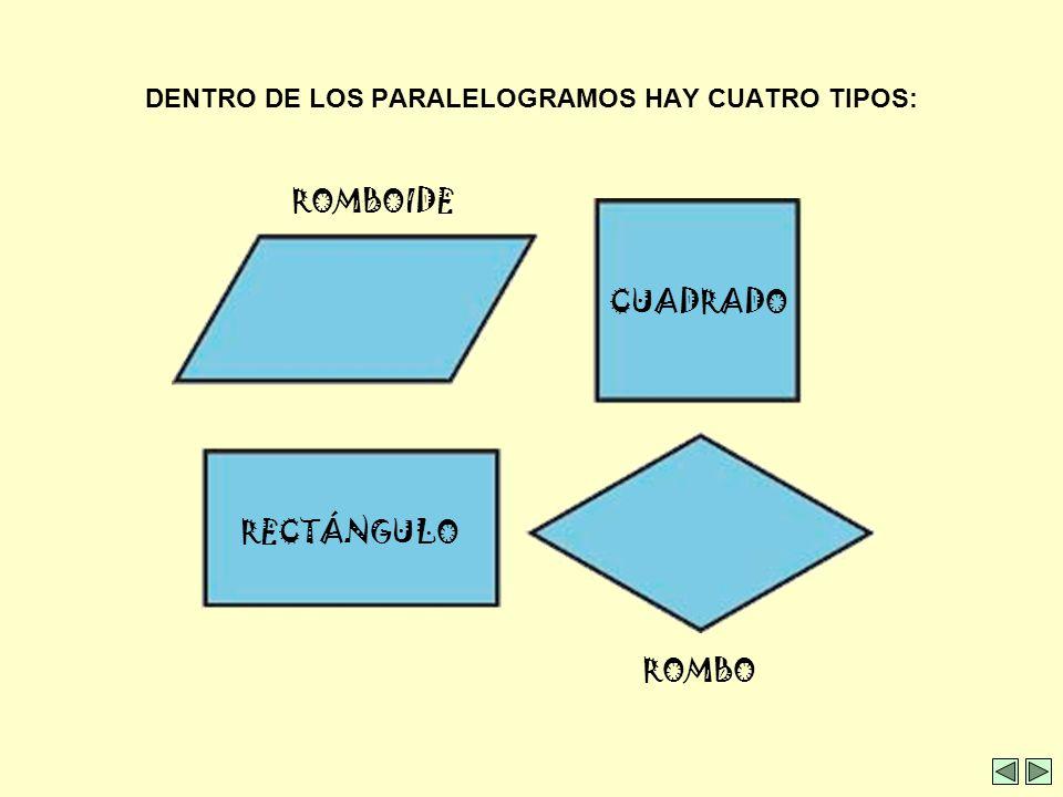 DENTRO DE LOS PARALELOGRAMOS HAY CUATRO TIPOS: