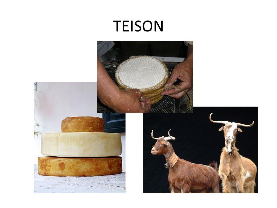 TEISON
