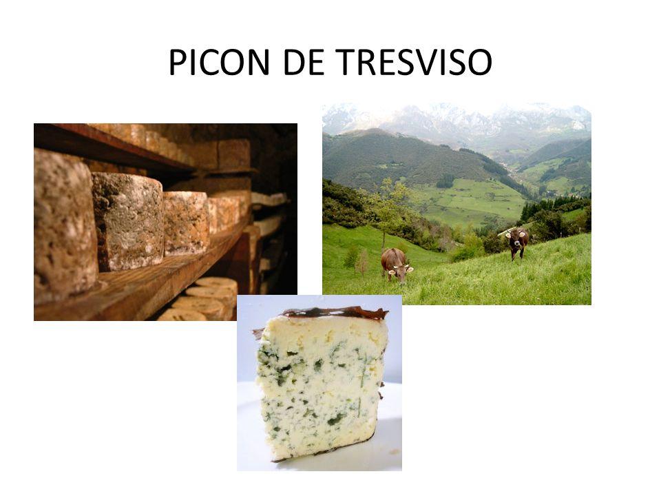 PICON DE TRESVISO