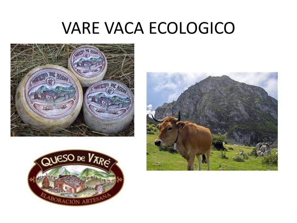 VARE VACA ECOLOGICO