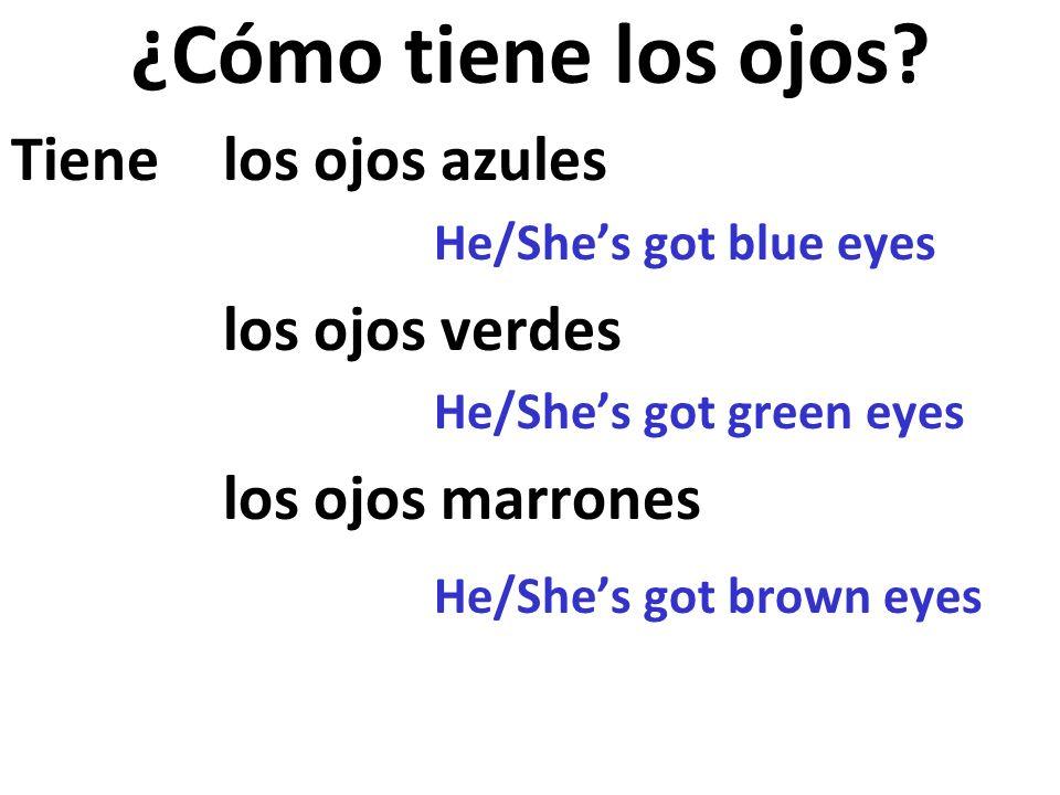 ¿Cómo tiene los ojos Tiene los ojos azules los ojos verdes