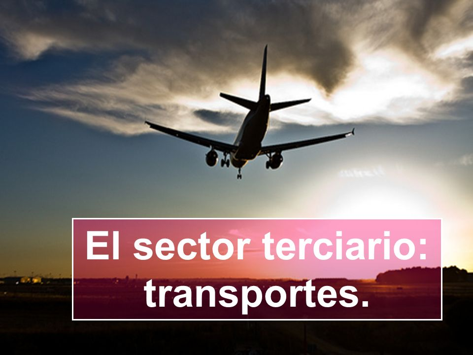 El sector terciario: transportes.