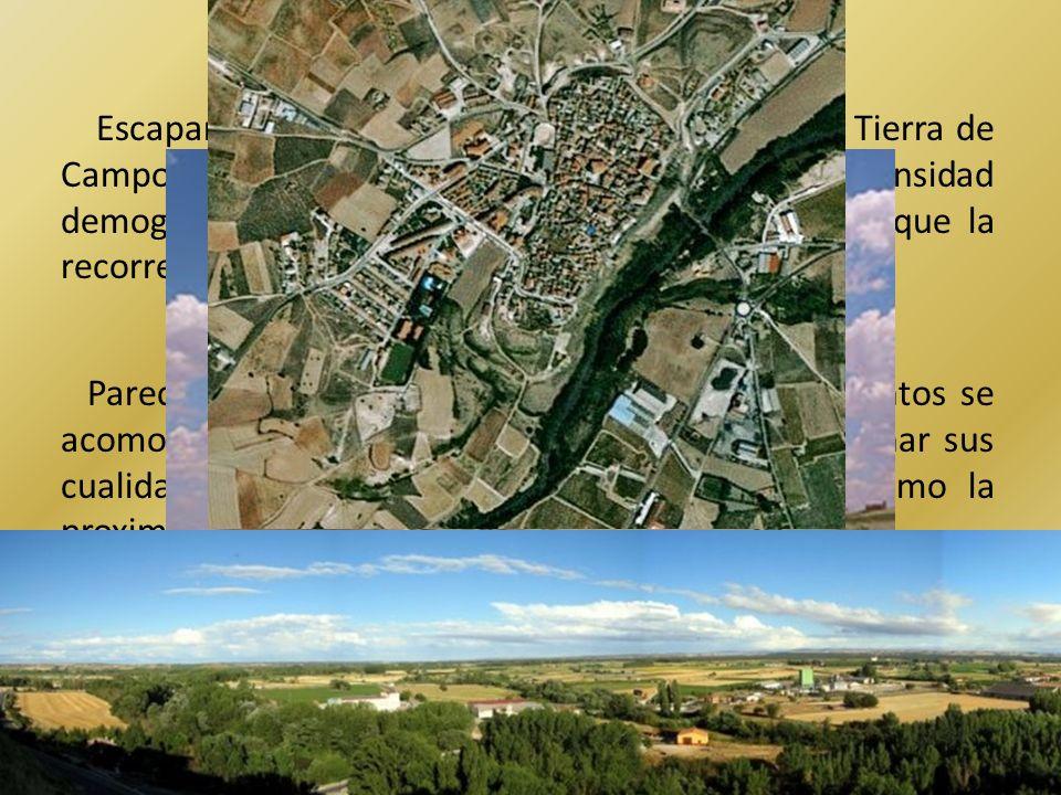 Escapan a esta tendencia los asentamientos de Tierra de Campos, donde se aprecia una mayor intensidad demográfica, bien ocupando las orillas de los ríos que la recorren o bien en el borde del páramo de Torozos.