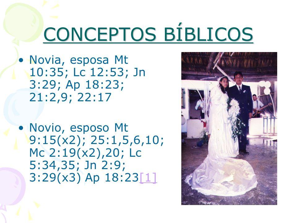 CONCEPTOS BÍBLICOS Novia, esposa Mt 10:35; Lc 12:53; Jn 3:29; Ap 18:23; 21:2,9; 22:17.