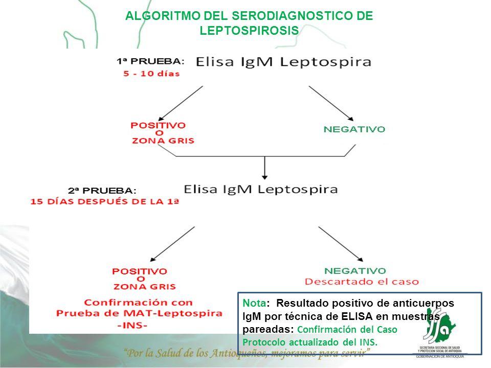 ALGORITMO DEL SERODIAGNOSTICO DE LEPTOSPIROSIS