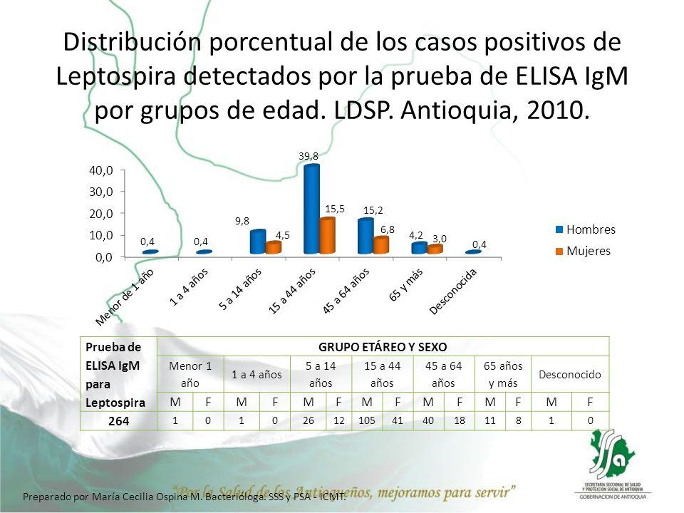 Distribución porcentual de los casos positivos de Leptospira detectados por la prueba de ELISA IgM por grupos de edad. LDSP. Antioquia, 2010.