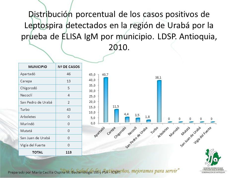 Distribución porcentual de los casos positivos de Leptospira detectados en la región de Urabá por la prueba de ELISA IgM por municipio. LDSP. Antioquia, 2010.
