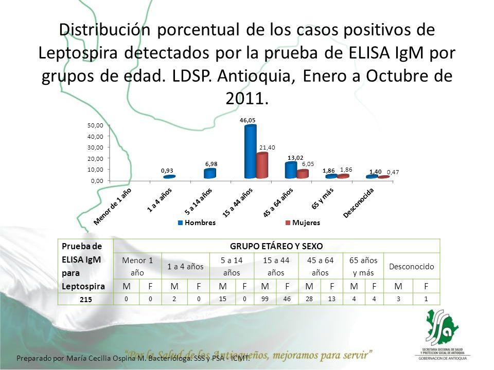 Distribución porcentual de los casos positivos de Leptospira detectados por la prueba de ELISA IgM por grupos de edad. LDSP. Antioquia, Enero a Octubre de 2011.