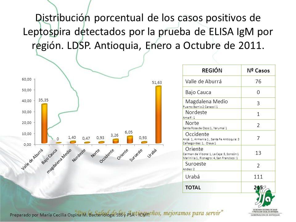 Distribución porcentual de los casos positivos de Leptospira detectados por la prueba de ELISA IgM por región. LDSP. Antioquia, Enero a Octubre de 2011.